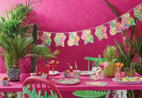 Kombiniere den Kaktus ruhig auch mit knalligen Farben